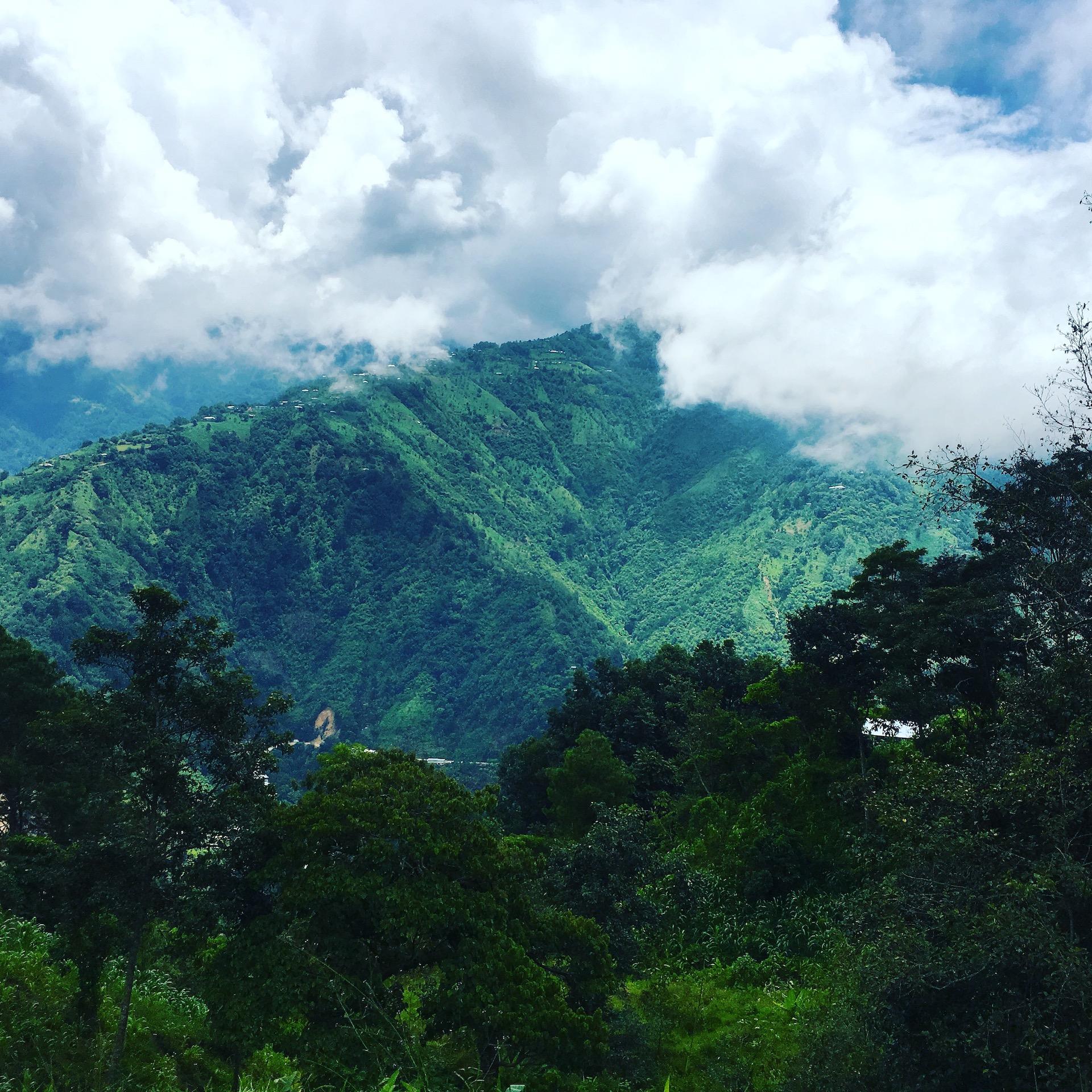 mountain Chiapas Tim Lang